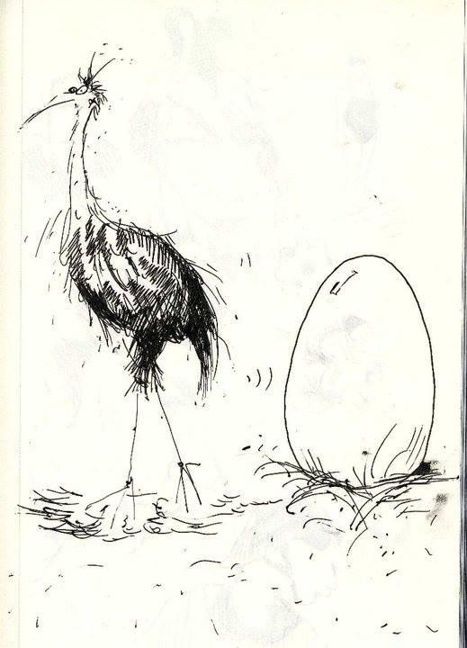 tekening vogel