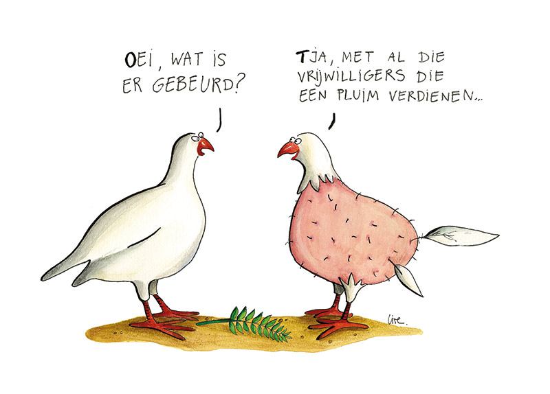 cartoon vrede vrijwillgers