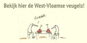 West-Vloamse veugels Lise Vanlerberghe